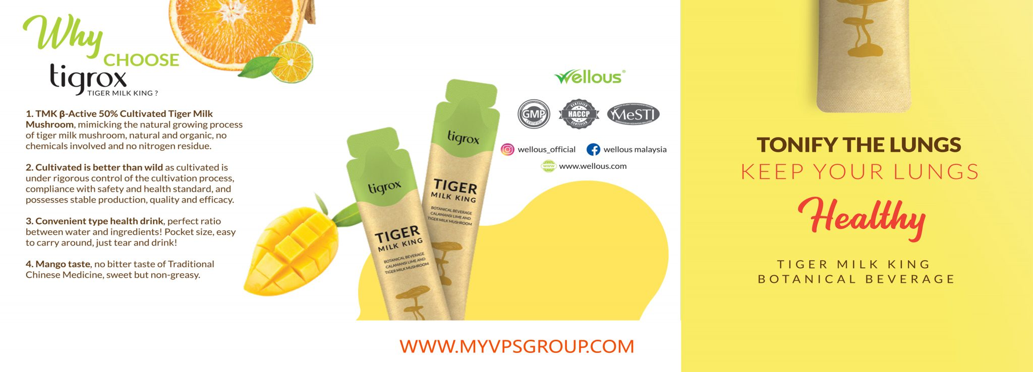 Wellouse-Singapore-MyVpsGroup-Malaysia-Digital-Marketing