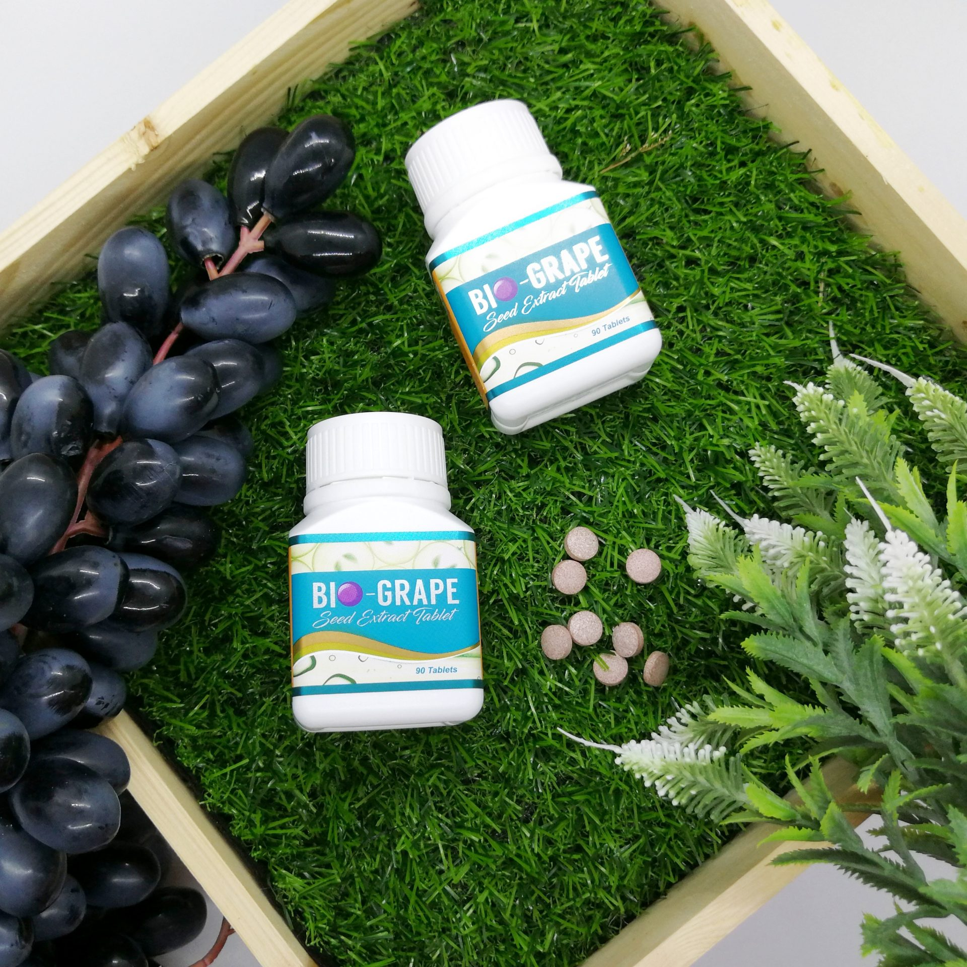 Wellous Singapore Wellous Bio Grape Seed GrapeSeed Reduce Blood Pressure Control Sugar Anti Aging Protect Eyes-MyVpsGroup-38